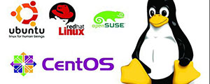 Linux Server support Perth